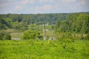 Судебная практика по делам о наследовании земельных участков