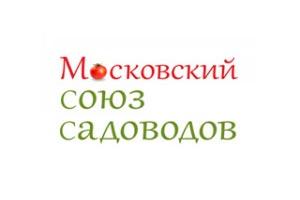 mcc1-300x225
