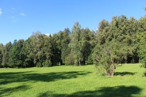 Отказ от земельных участков земельное право